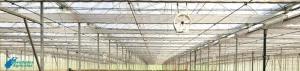 Problemas más frecuentes de Ventilación en Invernaderos