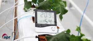 Clima de un Invernadero. ¿Cómo conseguir la Temperatura Ideal?