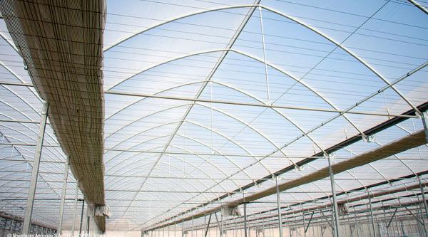Invernaderos Multitúnel, un buen tratamiento en ecológico