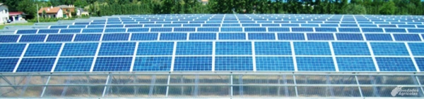 Advantages and Disadvantages of Photovoltaic Energy for Greenhouses
