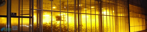 Artificial Lighting Control in Greenhouses crops
