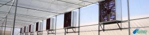 Recomendaciones para mejorar la Ventilación en Invernaderos
