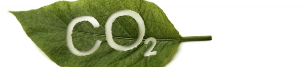 CO2 concentration control in greenhouse crops