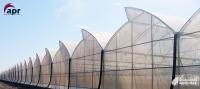Invernaderos más resistentes al viento