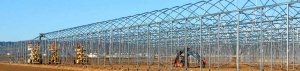 Novedades Agricolas build 12 has. greenhouse for tomato crop in Mazarrón.