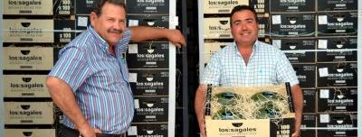 Hoya de los Canos de réduire les coûts de production
