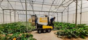 Finaliza el Proyecto de innovación MORE-THAN-CLEAN para reducir fitopatologías en los cultivos