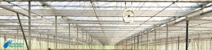 Most frequent problems of ventilation in Greenhouses