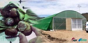 Novedades Agrícolas diseña el mejor centro de reproducción de Caracoles de Europa