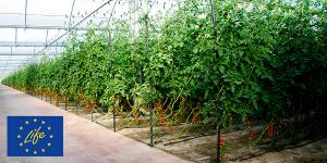 Nuevo proyecto I+D+i LIFE para el desarrollo de tecnologías sostenibles y rentables mediante solarización y ozono