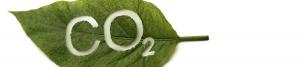 Control de la concentración de CO2 en los Cultivos de Invernadero
