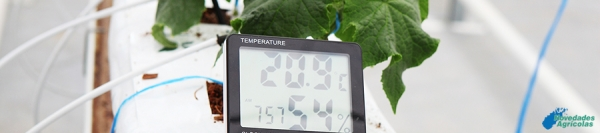 Temperature control in Greenhouses