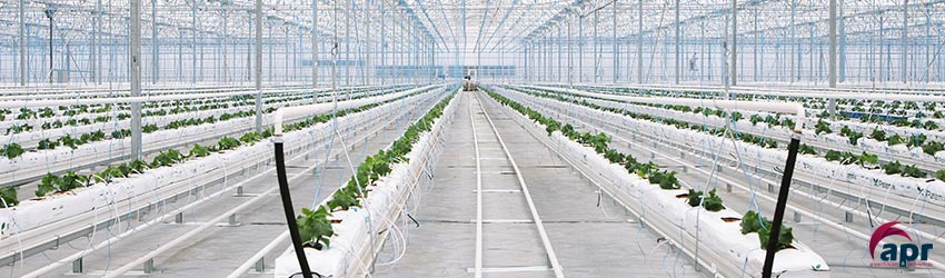 hydroponic greenhouse apr