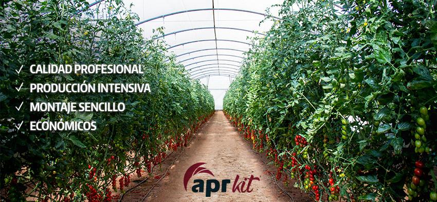 invernaderos profesionales tomate apr