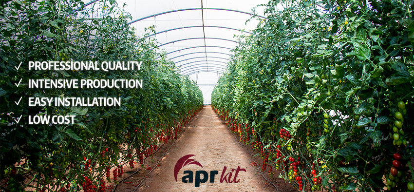 Professional Greenhouses Tomato apr