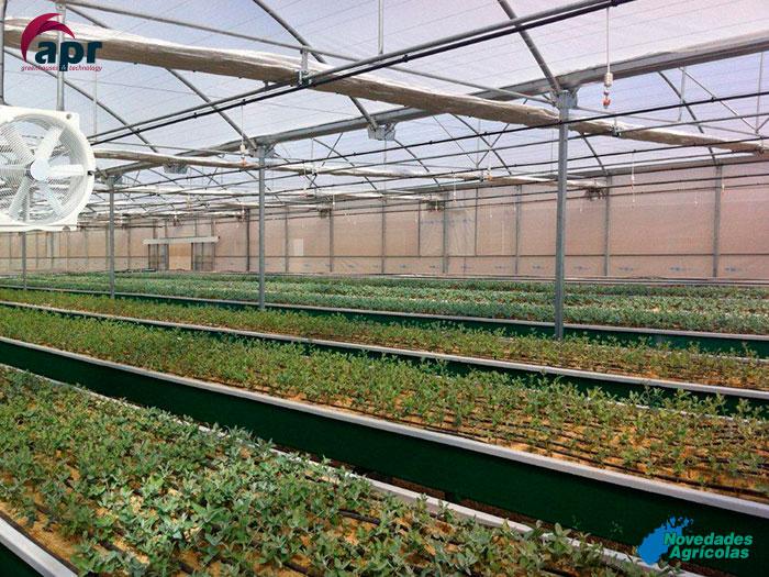 construcci n de invernaderos viveros en chile
