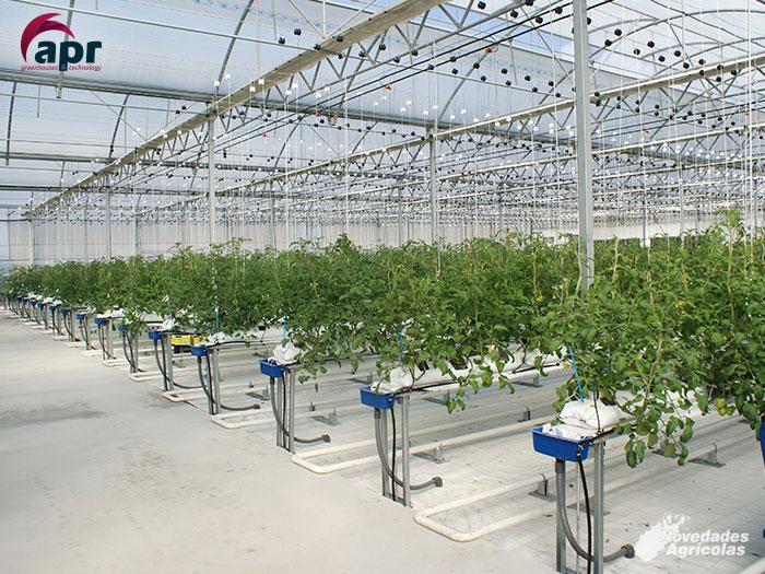 Venta y construcci n de invernaderos multi capilla en almer a for Construccion de viveros e invernaderos