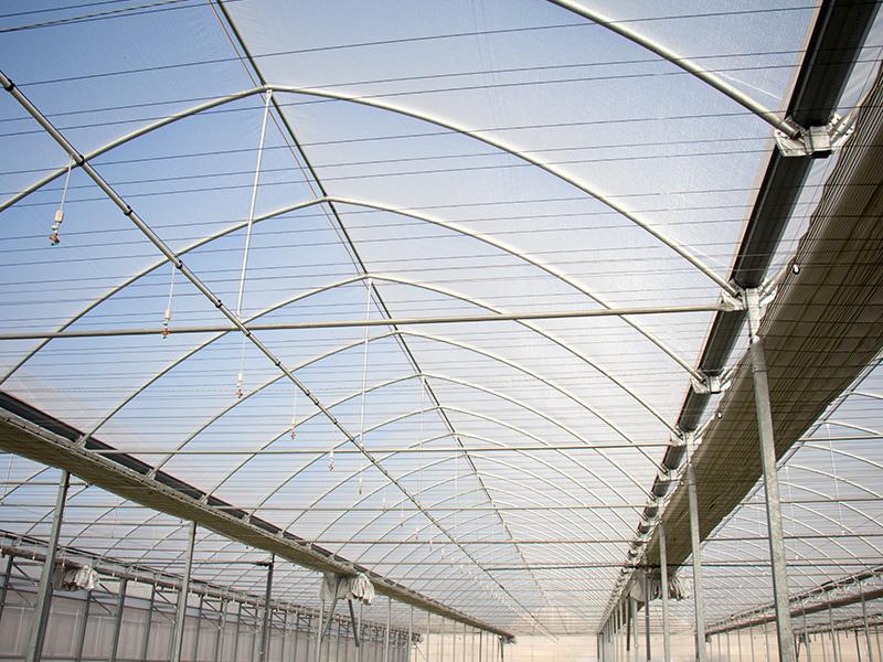 Construcci n de invernaderos multitunel ecol gicos apr - Empresas de construccion en murcia ...