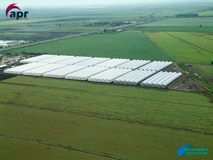 Construcci n de invernaderos de hortalizas en sinaloa mexico for Construccion de viveros e invernaderos