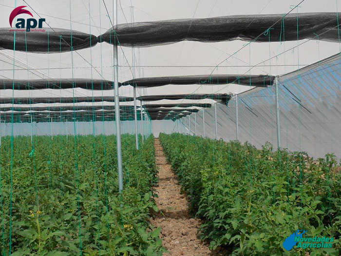 Construcci n de invernaderos malla sombra de tomate en turqu a for Construccion de viveros e invernaderos