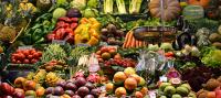 GREENDOMO. Nuevo proyecto de innovación para lograr alta productividad en cultivos urbanos