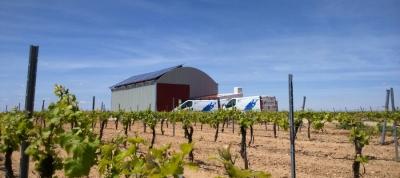 Situación y Evolución Agrícola en Castilla La Mancha