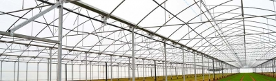 How to choose the best plastic for a Greenhouse?